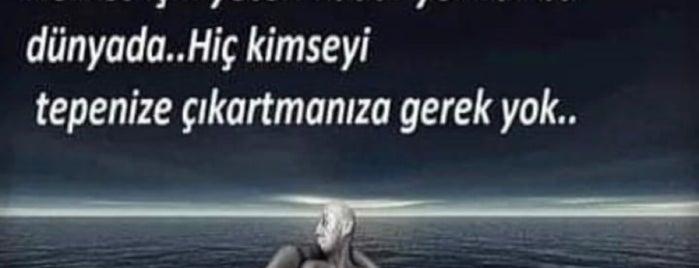 Başbereket Köyü is one of Locais curtidos por Fatih.