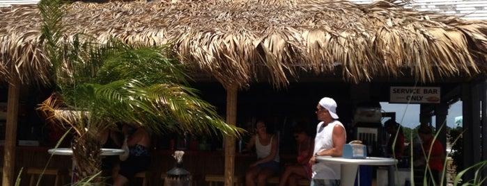 Paradise Grill is one of Lugares favoritos de morgan.