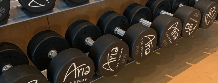 ARIA Gym is one of Lugares favoritos de Danyel.