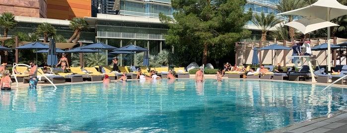 ARIA Pool & Cabanas is one of Cristina 님이 좋아한 장소.