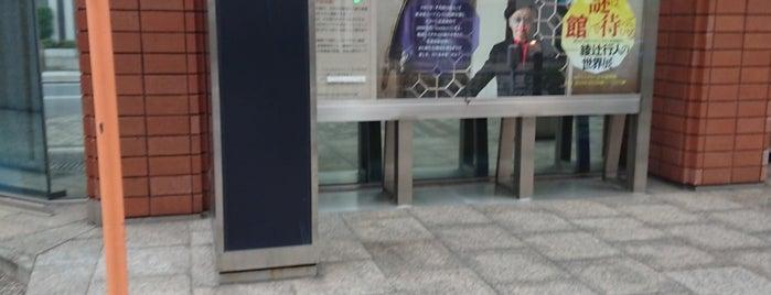 ミステリー文学資料館 is one of 東京、専門図書館リスト - Time Out Tokyo.