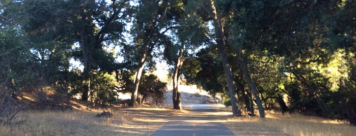 Coyote Creek Park Trail is one of San Jose Main St.