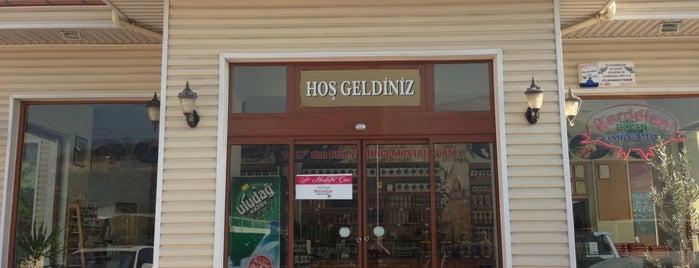 Zeytinci Mustafa Çam is one of Didem : понравившиеся места.