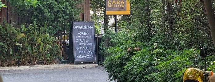 Caramellow is one of เชียงใหม่_3_Coffee.