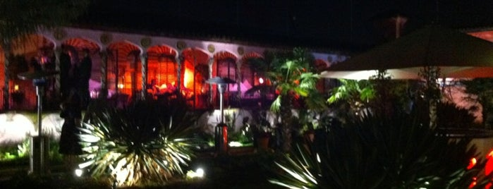 The Roof Gardens Club is one of M world.