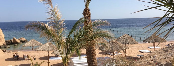 Hilton Waterfalls Sharm Private Beach is one of Nickさんのお気に入りスポット.