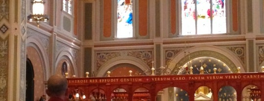 Cathedral of the Blessed Sacrament is one of Posti che sono piaciuti a Michelle.