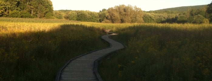 Appalachian Trail Boardwalk is one of Posti che sono piaciuti a Amol.