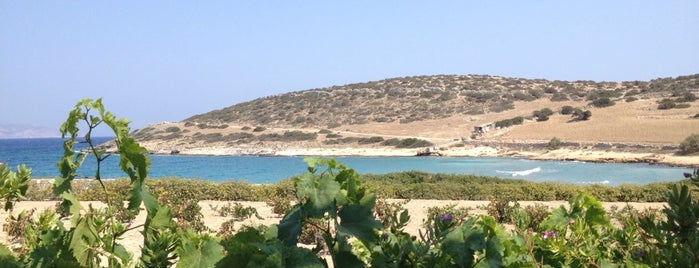 Lioliou Beach is one of Schoinoussa.
