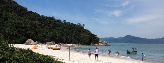 Ilha do Campeche is one of Floripa.