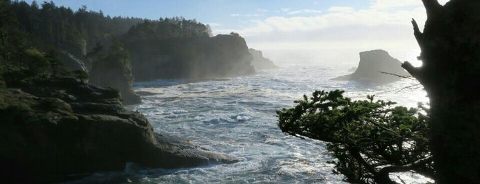 Cape Flattery Trail is one of Camping/Hiking in Western Washington.