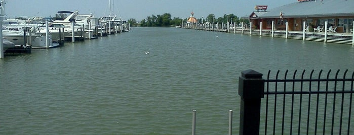 Cedar Point Marina is one of parks & such!.