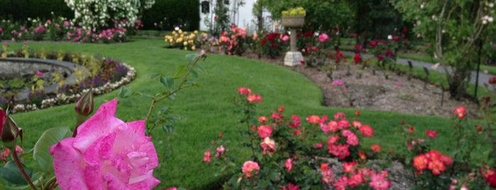 James P. Kelleher Rose Garden is one of BOSTON.