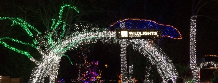 WildLights at Woodland Park Zoo is one of Danielさんのお気に入りスポット.