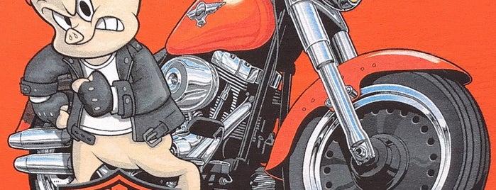 Six Bends Harley-Davidson is one of Locais curtidos por Ricardo.