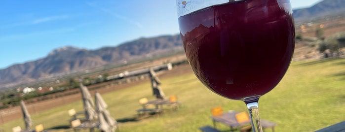 Decantos vinícola is one of Tempat yang Disukai Dominic.