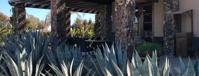 El Cielo Winery & Resort is one of Lugares favoritos de Eduardo.