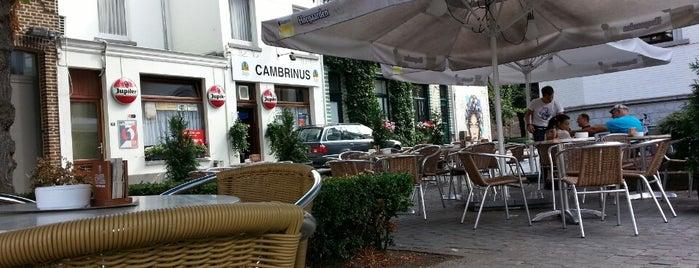 Café Cambrinus is one of Posti che sono piaciuti a Joeri.