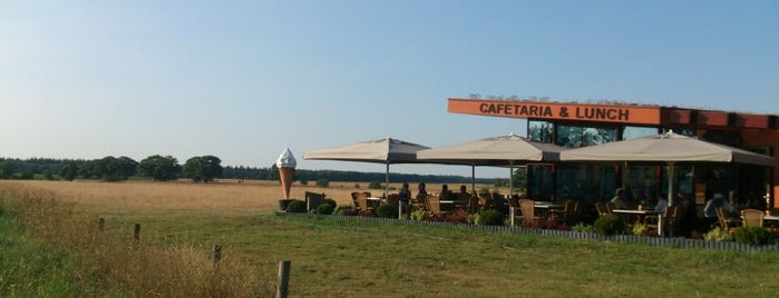 Airborne Cafetaria is one of Bart's Liked Places.
