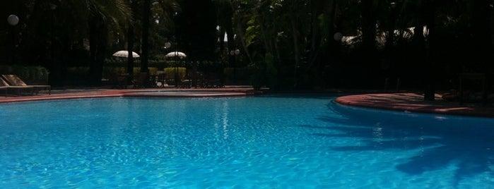 Hotel Huerto del Cura is one of Top 10 favorites places in Elche, España.