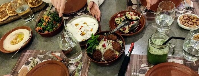 Loris is one of Beyrut.