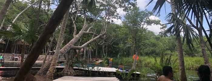 Cenote Corazón Del Paraiso is one of Lieux qui ont plu à Stephraaa.