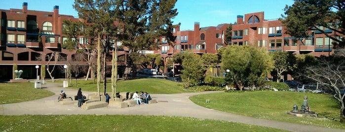Sydney Walton Park is one of San Francisco Bay.