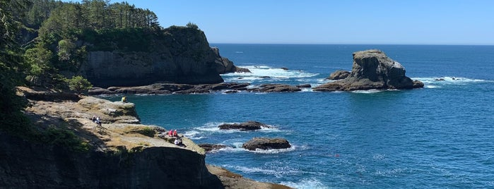 Cape Flattery Trail is one of Off-Grid Birthday.