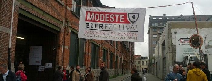 De Koninck - Antwerp City Brewery is one of birra.