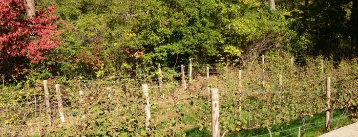 Solomons Island Winery is one of Wineries Visited.