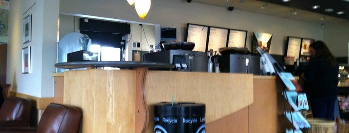 Starbucks is one of Kelly 님이 좋아한 장소.