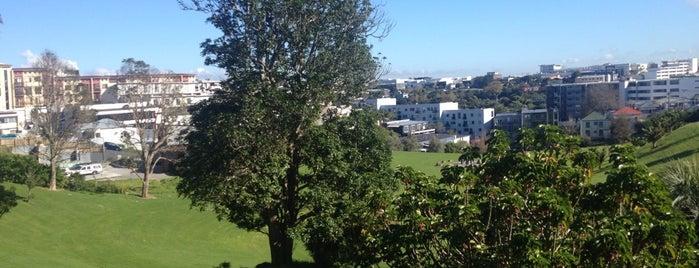 Basque Park is one of Auckland's 10 most secret places.