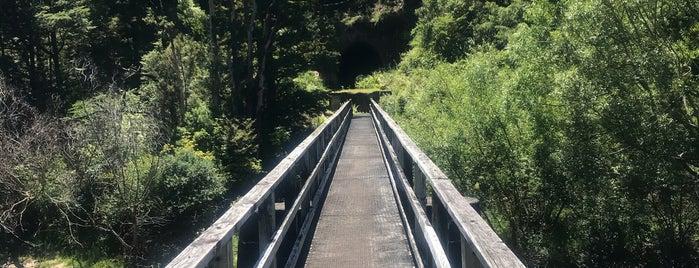 Kahurangi National Park is one of NZ NP.
