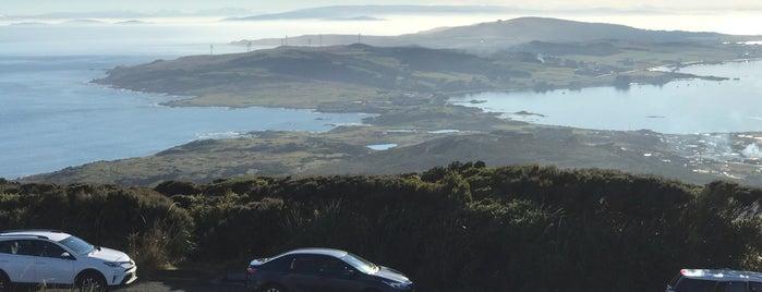 Bluff Lookout Point is one of Nuova Zelanda.