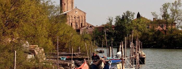 Isola di Torcello is one of Venezia.