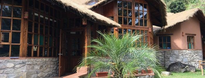 Lucma Lodge is one of Peru.