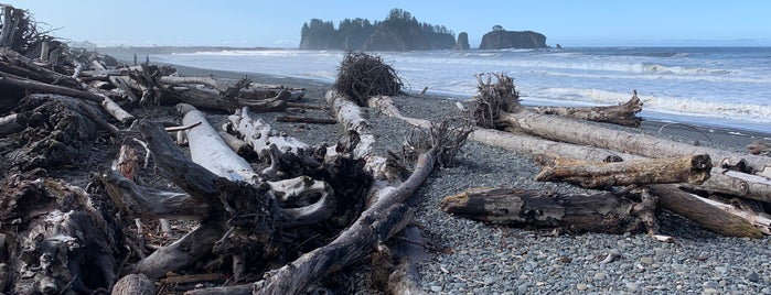 Rialto Beach is one of Seattle things to do.