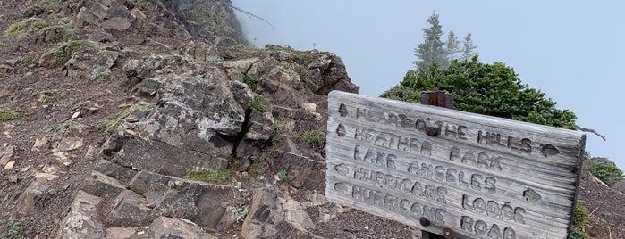 Klahhane Ridge Trail is one of Doobyaさんの保存済みスポット.