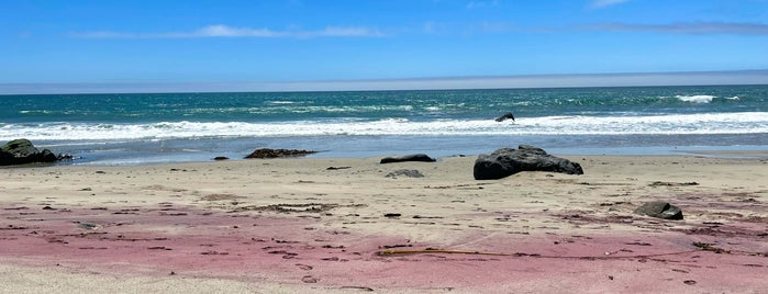 Andrew Molera State Park is one of To Do List.