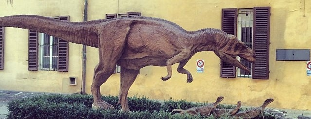 Museo di Storia Naturale, Sezione di Geologia e Paleontologia is one of Matteo 님이 좋아한 장소.