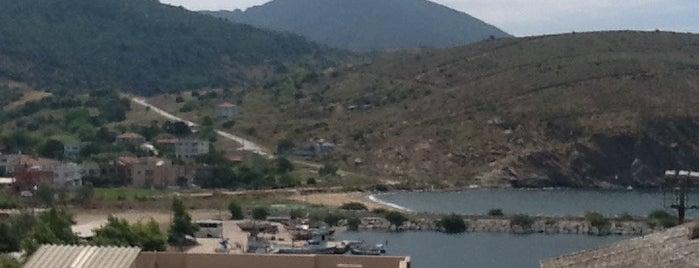 Şahinburgaz is one of สถานที่ที่บันทึกไว้ของ Bengi.