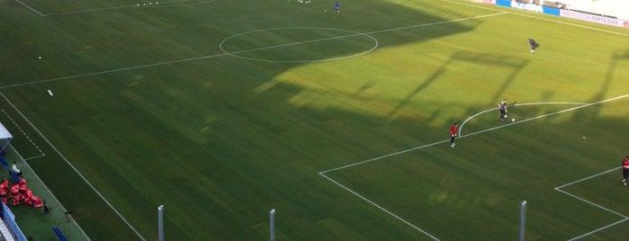 Estadio La Rosaleda is one of Part 1~International Sporting Venues....