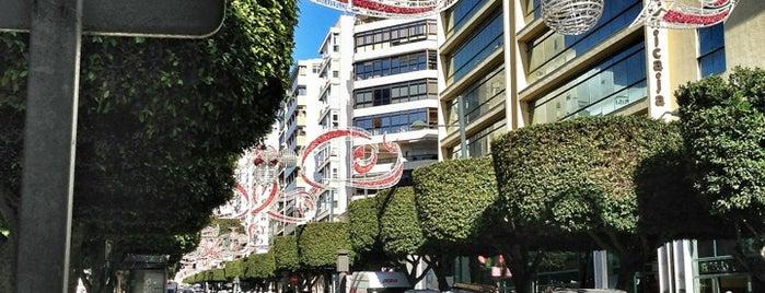 Paseo de Almería is one of QUE VISITAR CUANDO ESTAS EN ALMERIA.
