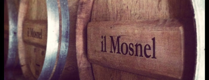 Il Mosnel is one of Lieux qui ont plu à Sommelierxte.