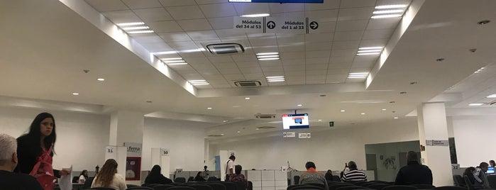 Servicio de Administración Tributaria (SAT) is one of Luis : понравившиеся места.