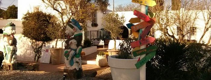 La Galeria Elephante is one of Ibiza.