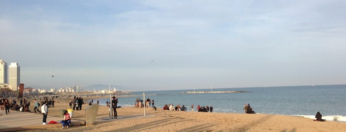 Platja de Sant Miquel is one of Barcelona Touristic places Done.