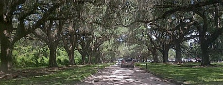 Boone Hall Plantation is one of Museums.