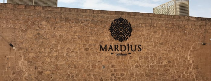 Mardius Tarihi Konak is one of Mardin.
