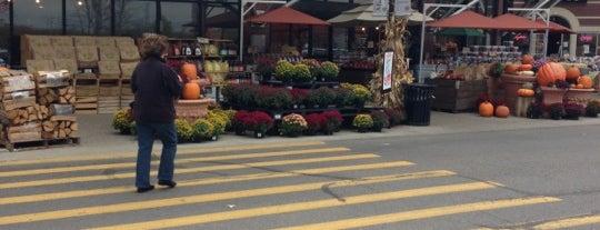 Vince & Joe's Gourmet Market is one of สถานที่ที่ Mike ถูกใจ.